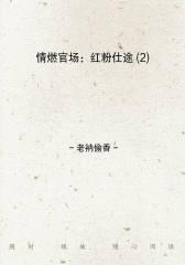 情燃官场:红粉仕途(2)