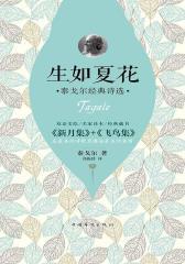 生如夏花:泰戈尔经典诗选