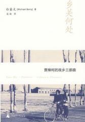 贾樟柯故乡三部曲:乡关何处(试读本)