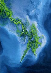 密西西比:大河之路