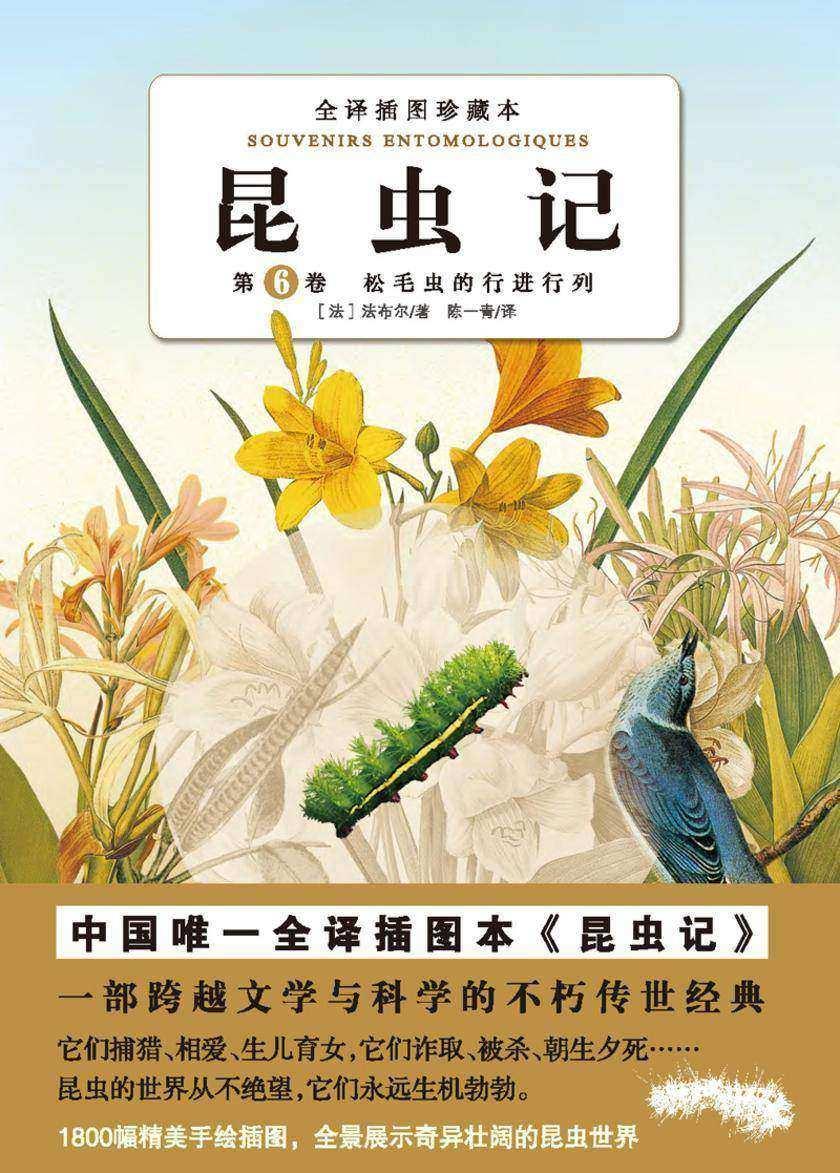 昆虫记(第六卷):松毛虫的行进行列(仅适用PC阅读)