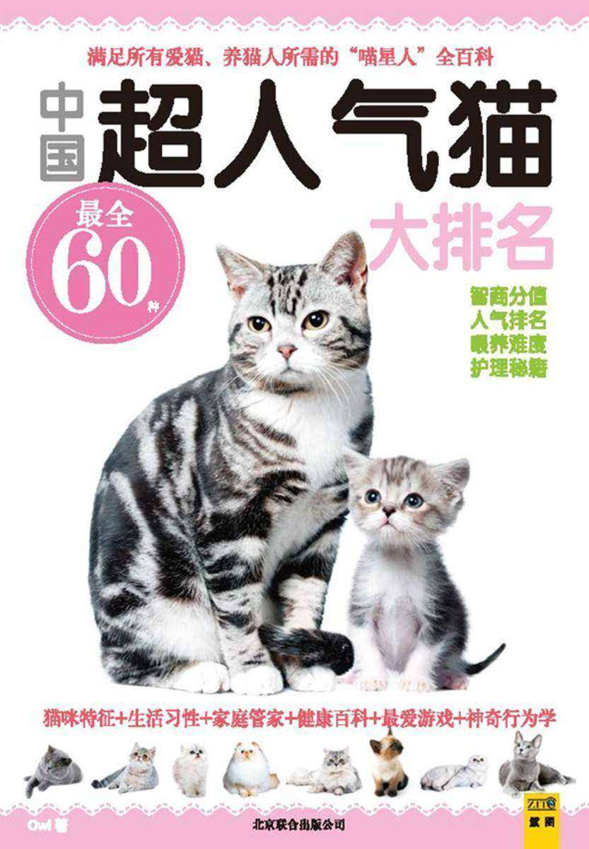 中国超人气猫大排名