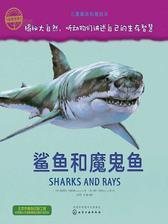 自然传奇.鲨鱼和魔鬼鱼