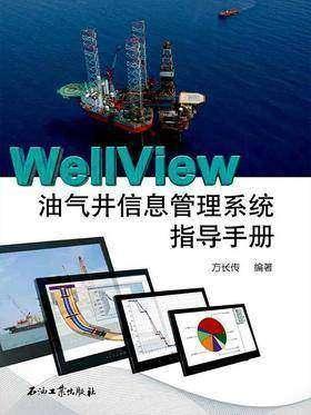 WellView油气井信息管理系统指导手册