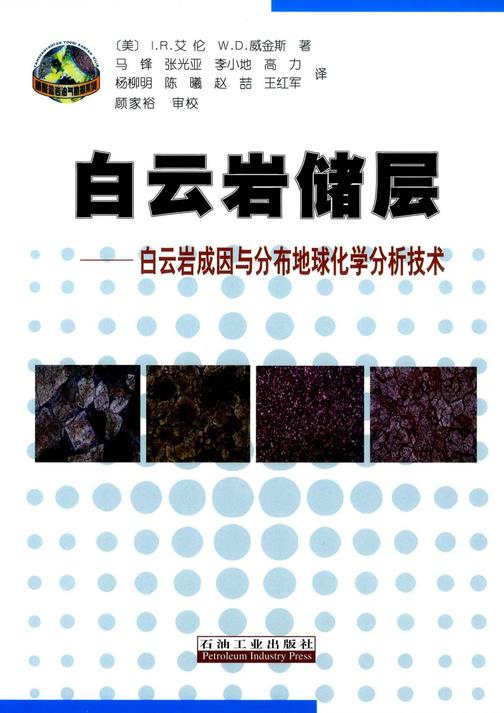 白云岩储层 :白云岩成因与分布地球化学分析技术