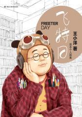 飞特日——王小洋首本个人画集(仅适用PC阅读)