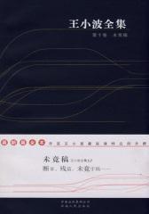 王小波全集.第十卷.未竟稿