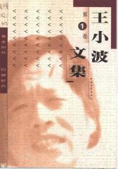 王小波文集