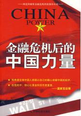 金融危机后的中国力量(试读本)