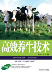 高效养牛技术