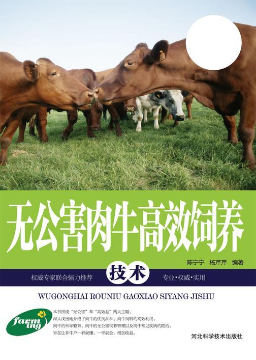 无公害肉牛高效饲养技术
