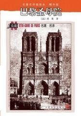 巴黎圣母院(名著名译插图本·精华版)