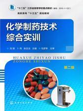 化学制药技术综合实训第二版
