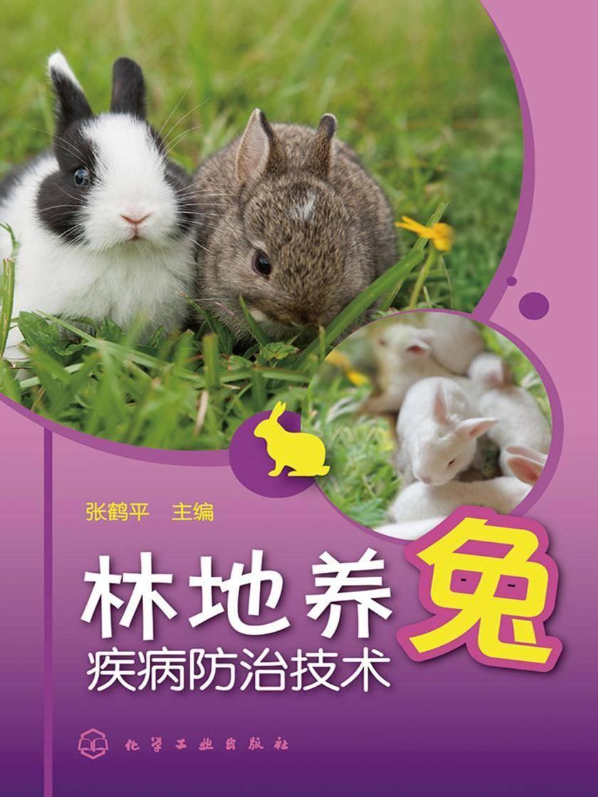 林地养兔疾病防治技术