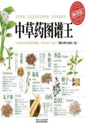 健康大讲堂-中草药图谱王(金版健康文库:畅销版)