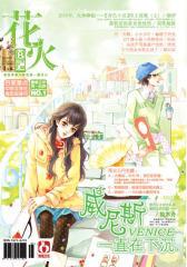 花火B-2010-03期(电子杂志)