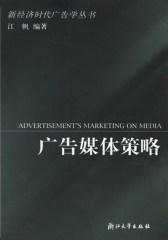 广告媒体策略(仅适用PC阅读)