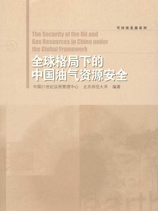 全球格局下的中国油气资源安全