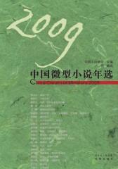 2009中国微型小说年选