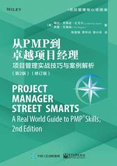 从PMP到卓越项目经理:项目管理实战技巧与案例解析(第2版)(修订版)