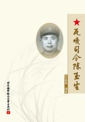 瓦嘎司令陈玉生