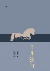 千川独行:赵恺传