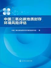 中国二氧化碳地质封存环境风险评估