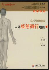 人体经筋循行地图