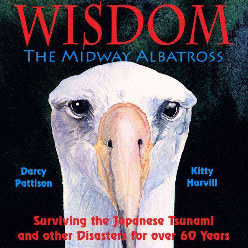 Wisdom, the Midway Albatross: Surviving the Japanese Tsunami and Other Disasters