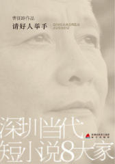 深圳当代短小说八大家——请好人举手