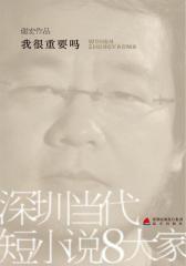 深圳当代短小说八大家——我很重要吗