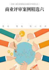 商业评审案例精选六