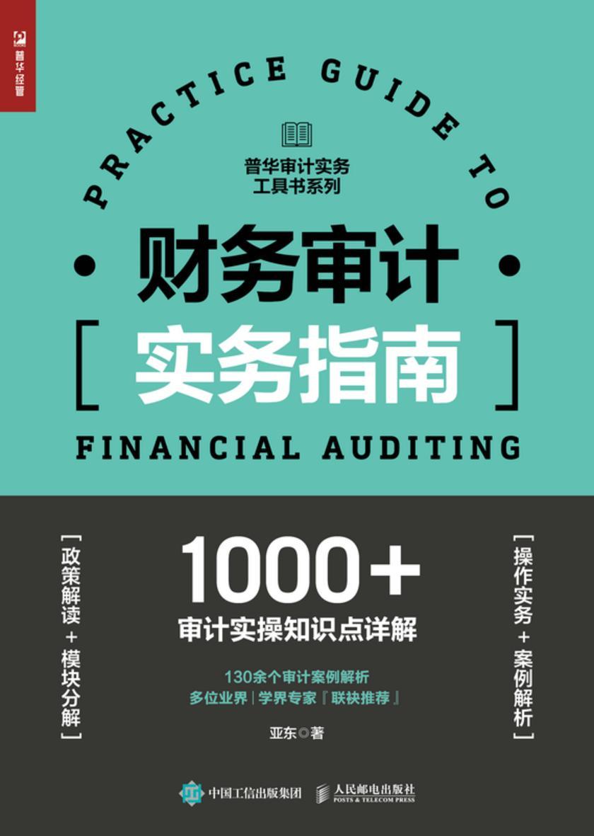 财务审计实务指南