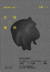 阅读大师(全本):小说密码