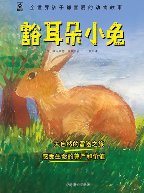 豁耳朵小兔