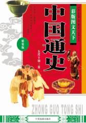 彩版图文天下·中国通史(五代十国—金)