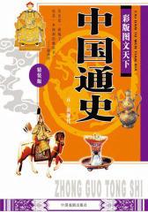 彩版图文天下·中国通史(元—近现代)