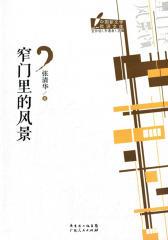 当代新文学批评文库丛书:窄门里的风景