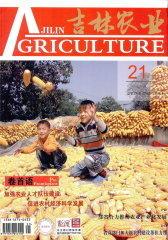 吉林农业 月刊 2011年11期(电子杂志)(仅适用PC阅读)