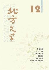 北方文学 月刊 2011年12期(电子杂志)(仅适用PC阅读)