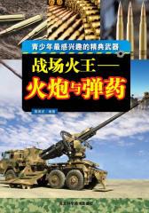 战场火王:火炮与弹药