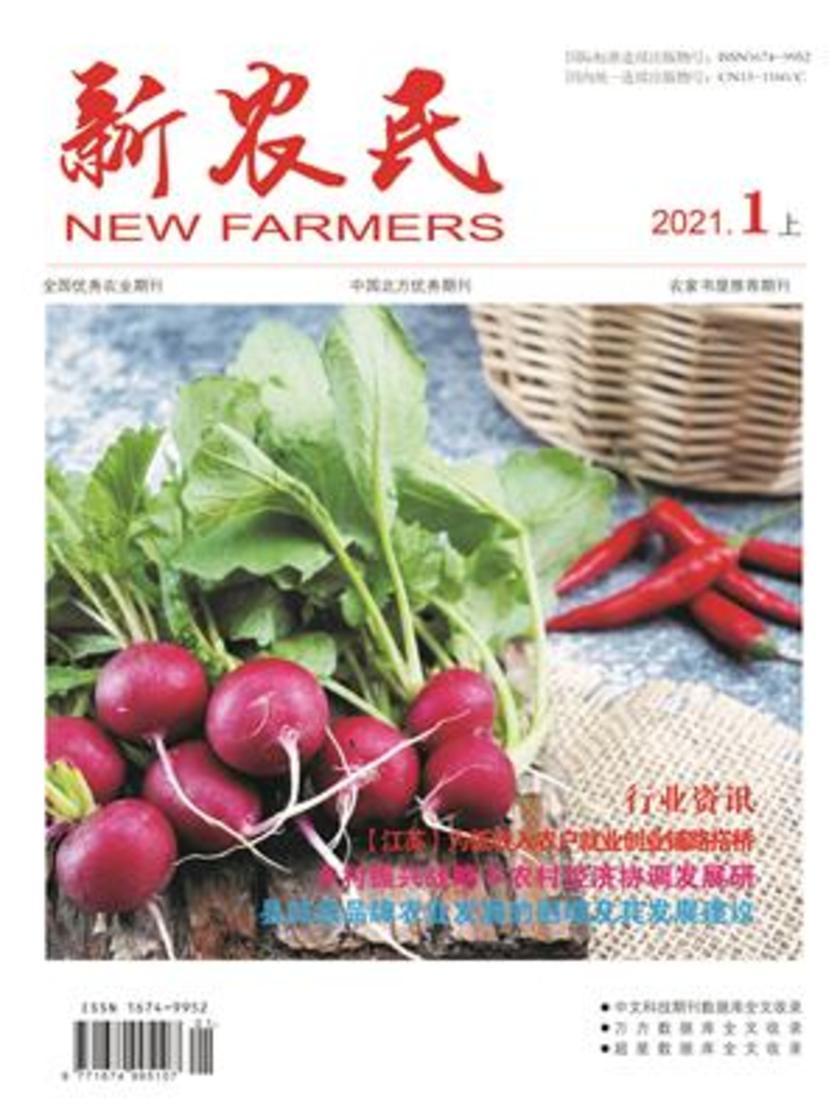 新农民2021.1上(电子杂志)