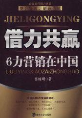 借力共赢6力营销在中国(试读本)