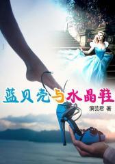 蓝贝壳与水晶鞋3