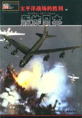 太平洋战场的胜利(中):轰炸日本(仅适用PC阅读)