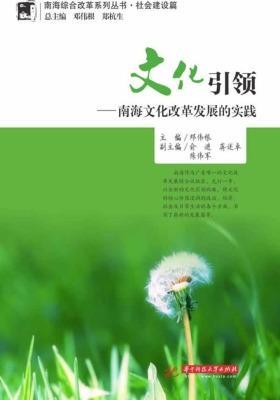 文化引领:南海文化改革发展的实践(南海综合改革系列丛书·社会建设篇)
