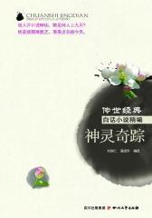 传世经典白话小说精编 神灵奇踪