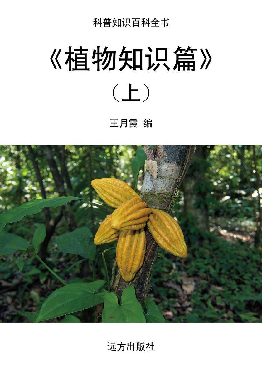 植物知识篇(上)