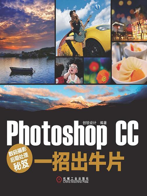 数码摄影后期处理秘笈:Photoshop CC一招出牛片