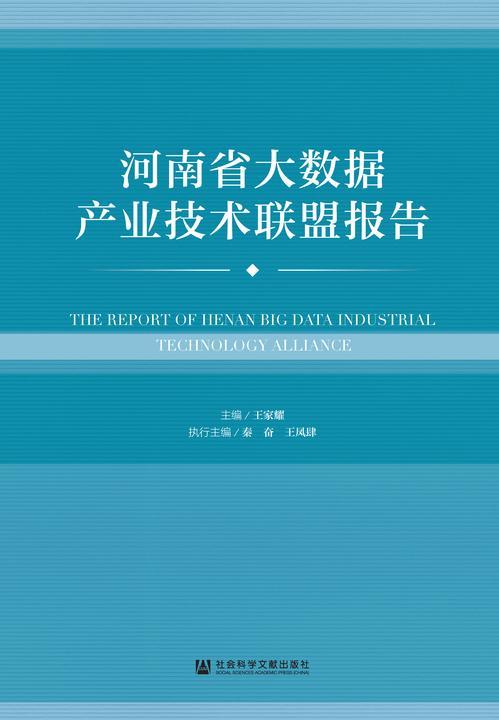 河南省大数据产业技术联盟报告